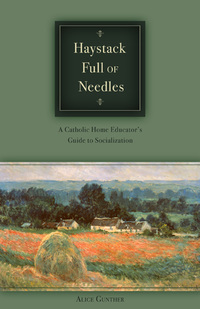 Haystack_full_of_needles_cover_2